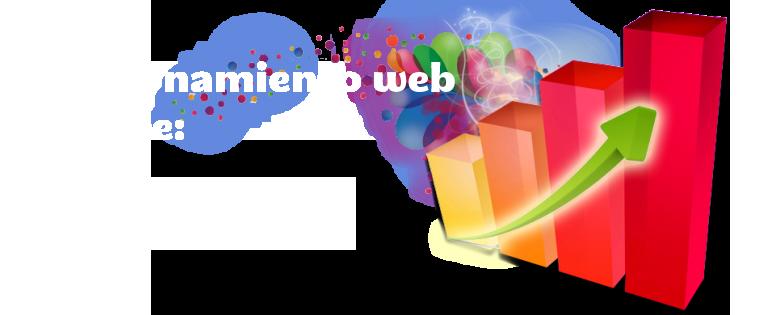Posicionamiento web Seo en Madrid